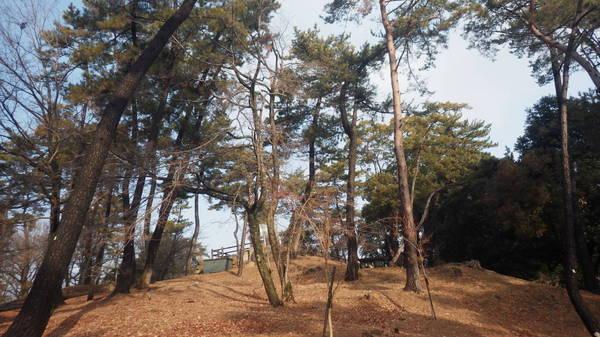 0001東公園3.JPG