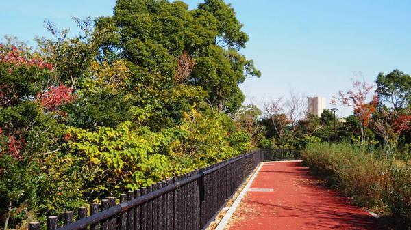0011雁宿公園1.JPG